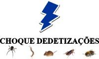 Logo de Choque Dedetização