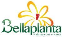 Logo Bella Planta em Plano Diretor Sul
