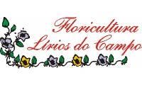 Logo de Floricultura Lírios do Campo em Roque