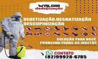 Logo de Waldir Dedetizações 24h em Chã da Jaqueira