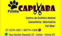 Logo Patinha Capixaba Pet chop Banho e tosa Consultório Veterinário em Centro