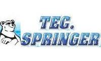 Logo Tec Springer - Climatização em Palmas
