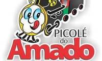 Logo de Picolé do Amado BH em Cruzeiro