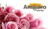 Logo de Amparo Flores  em Graça