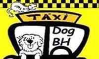 Logo de Táxi Dog Bh em Betânia