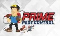 Logo de Prime Pest Control Desentupidora